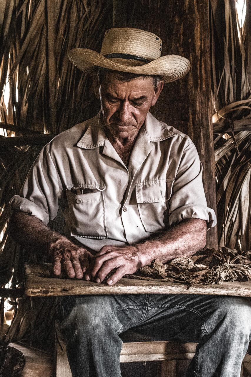Tabakbauer beim Zigarren rollen